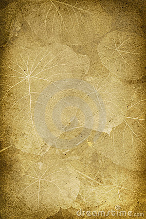 Vintage Broad Leaf Imprint Background