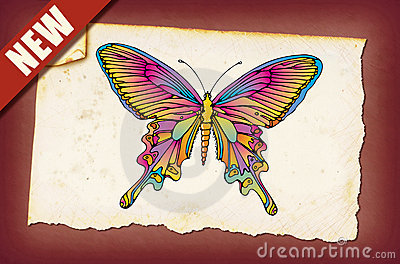 A Vintage Butterfly