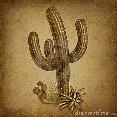 Vintage cactus with grunge texture