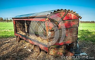 Vintage Cattle Feeder