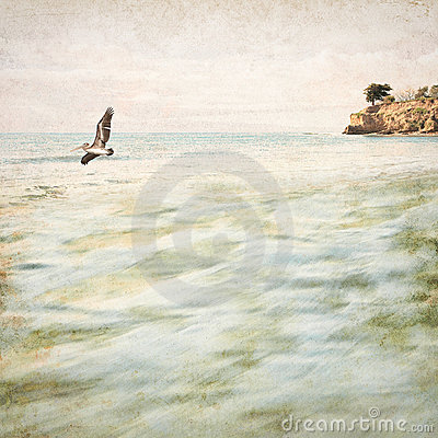 Vintage Coastal Seascape