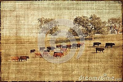 Vintage Cows Landscape