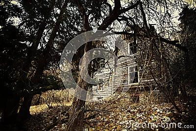 Vintage creepy house