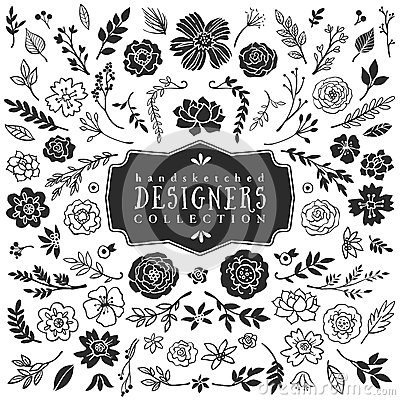 Free Vintage Decorative Plants And Flowers Collection. Hand Drawn Stock Photos - 50326243