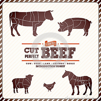 Free Vintage  Diagram Guide For Cutting Meat Stock Images - 30889284