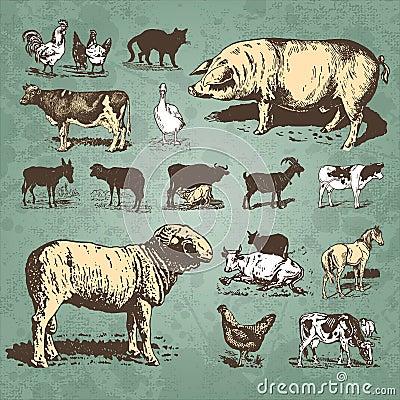 Vintage dos animais de exploração agrícola ajustado ()