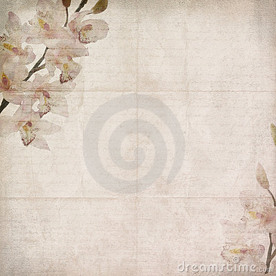 Vintage floral background with orchids