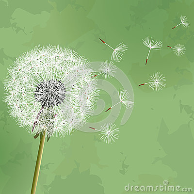 Free Vintage Floral Background With Flower Dandelion Royalty Free Stock Image - 29192756