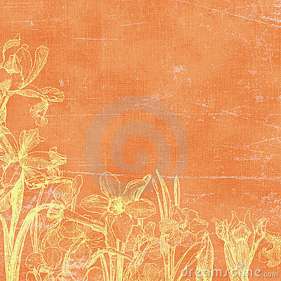 Free Vintage Florals Botanical Paper Background Stock Photography - 4697242