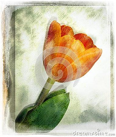 Free Vintage Flower Royalty Free Stock Photos - 595428