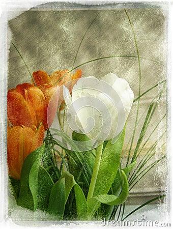 Free Vintage Flower Stock Image - 595431