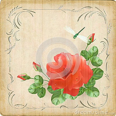 Vintage flower dragonfly retro card border frame