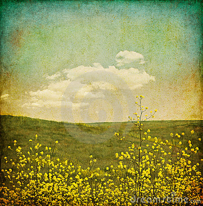Free Vintage Flower Grunge Stock Image - 16374591
