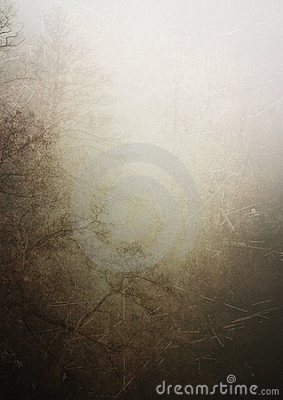 Vintage forest texture background