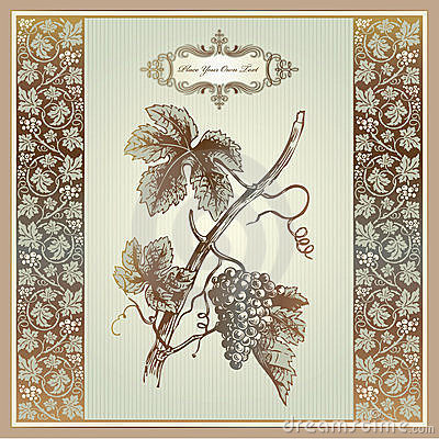 Free Vintage Grape Elements For Wine Label, Menu, Print Royalty Free Stock Photos - 21054748