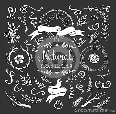 Free Vintage Graphic Set Of Flowers, Branches, Leafs And Rustic Design Elements. Royalty Free Stock Images - 65641529