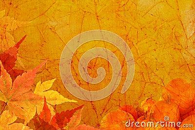 Vintage canvas background with Harvest Background