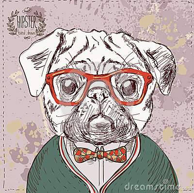 Vintage illustration of hipster pug dog