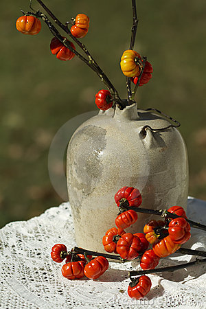 Vintage Moonshine Jug & Pumpkin Tree Branches