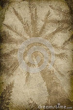 Vintage Palm Tree Imprint Background