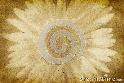 Vintage Paper with Flower Imprint