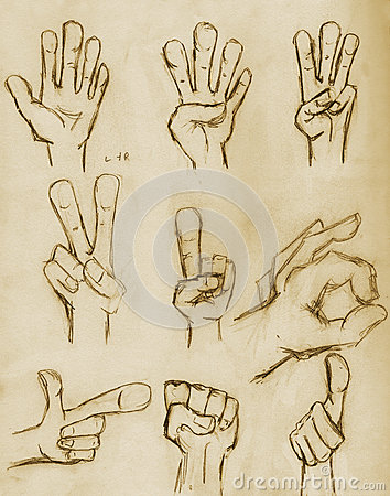 Vintage Pencil Drawn Hands