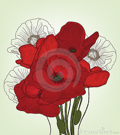 Vintage poppies composition