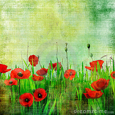 Free Vintage Poppy Field Stock Images - 6270834