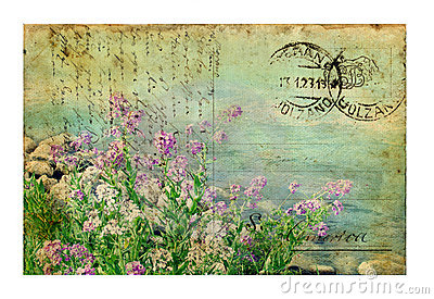 Vintage Postcard with Flowers
