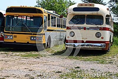 Vintage Public Transportation Vehicles - Buses.