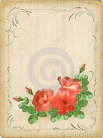 Vintage retro flowers roses postcard border frame