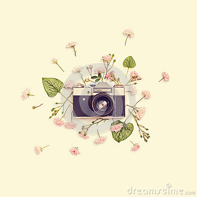 Free Vintage Retro Photo Camera, Pink Roses The Fairy And Leaves Royalty Free Stock Photography - 78341487