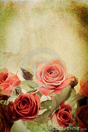 Free Vintage Rose Stock Photography - 20519992