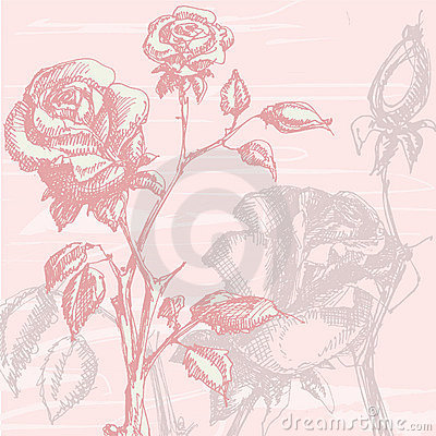 Free Vintage Roses Stock Photography - 14397112