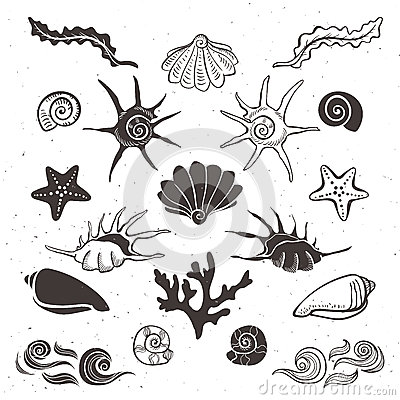 Free Vintage Sea Shells, Starfish, Seaweed, Coral And Waves. Stock Photography - 45428592