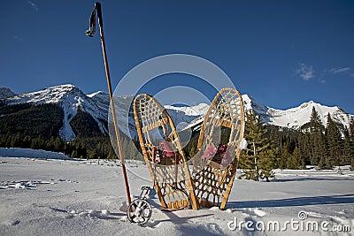 Vintage snowshoes and ski poles
