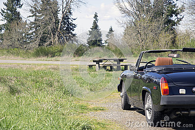 Vintage Sports Car picnic table