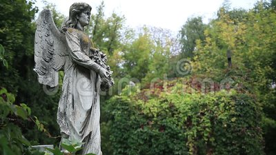 Vintage statue of winged angel at the graveyard stock footage