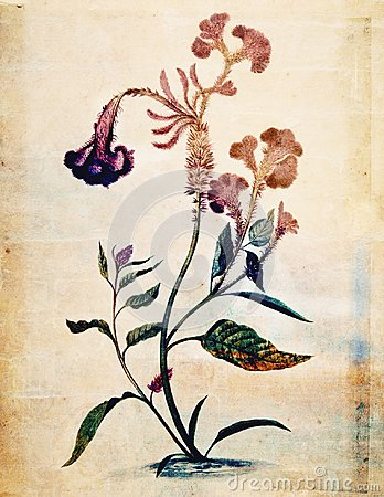 Free Vintage Style Botanical Flower Wall Art In Rich Colors Royalty Free Stock Photo - 103594625