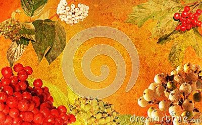 Vintage styled autumnal frame