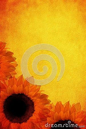 Free Vintage Sunflowers Royalty Free Stock Image - 13408986