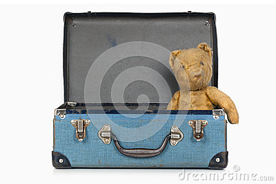 Vintage Teddy Bear in Old School Case
