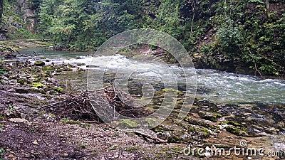 Vintgar Slovenia