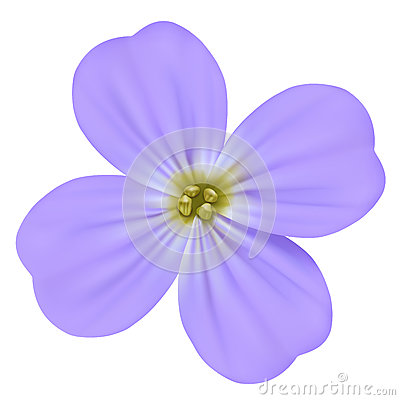 Free Viola Odorata, Sweet Violet, English Violet, Common Violet, Or Garden Violet Vector Blooming Blue Flower Isolated Royalty Free Stock Images - 93968459