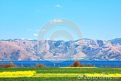 A violação é gastada na beira do lago do lago Erhai