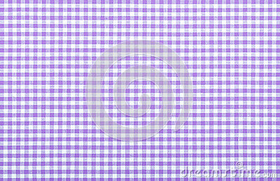 Violet checkered fabric
