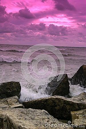 Violet Storm