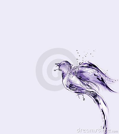 Violet Water Bird Flying Up and Away