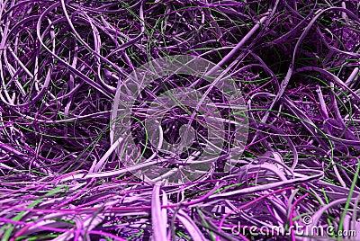 Violet wires