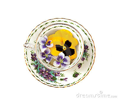 Violets and Pansies